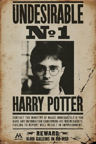 HARRY POTTER - Poster 61X91 - Undesirable N° 1