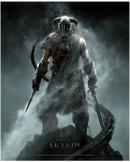 SKYRIM - WallScroll 77X100 - Dragonborn