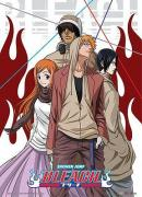 BLEACH - Wallscroll 80X110 - Casual Look