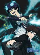 BLUE EXORCIST - Wallscroll 80X110 - Rin and Yukio