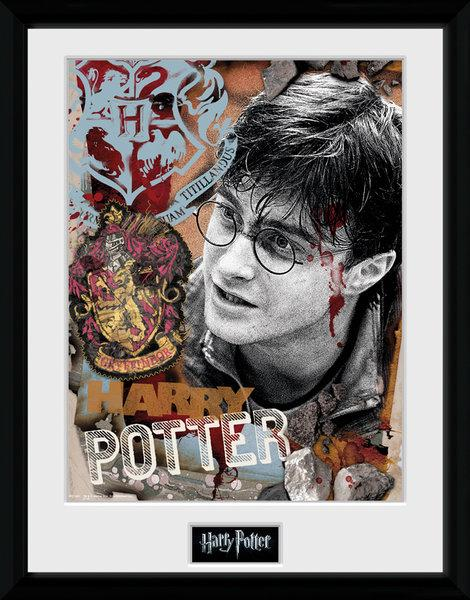 HARRY POTTER - Collector Print 30X40 - Harry Potter_1