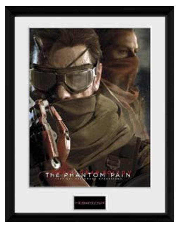 METAL GEAR SOLID 5 - Collector Print 30X40 - Goggles