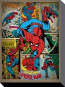 MARVEL COMICS - Canvas 60X80 '18mm' - Spiderman Retro