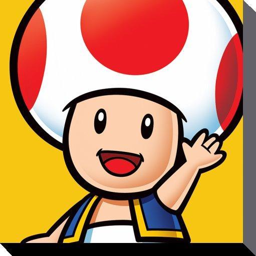 NINTENDO - Canvas 40X40 '38mm' - Super Mario : Toad