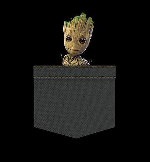 MARVEL - T-Shirt Pocket Groot 'New Fit' - Black (XS)_2