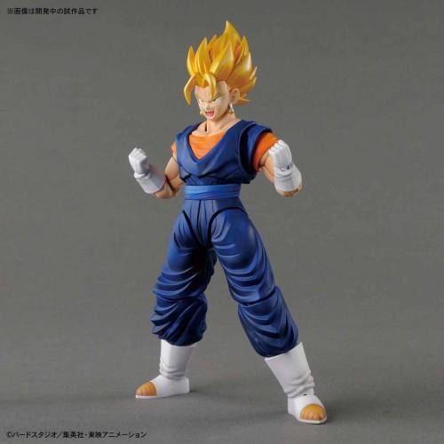 DRAGON BALL - Model Kit - Super Saiyan Vegetto_2