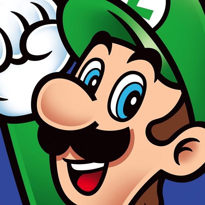 NINTENDO - Canvas 40X40 '18mm' - Super Mario : Luigi
