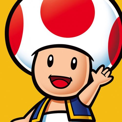 NINTENDO - Canvas 40X40 '18mm' - Super Mario : Toad