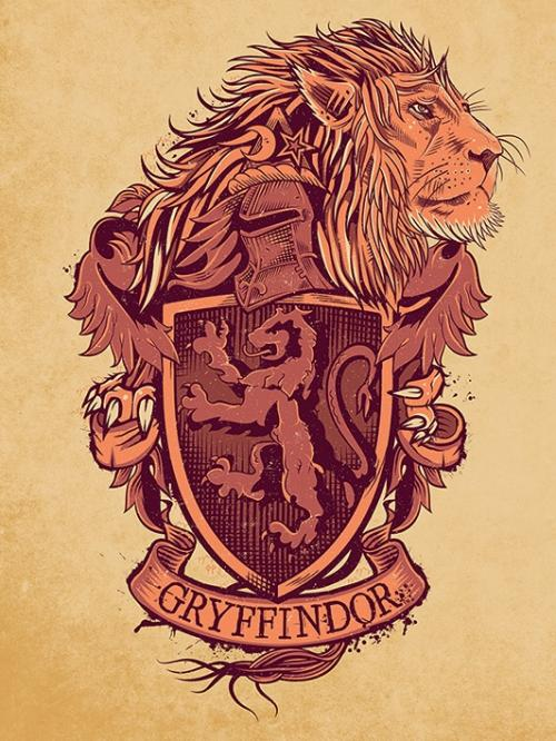HARRY POTTER - Canvas 60X80 '18mm' - Gryffindor