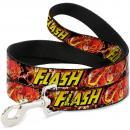 FLASH - Laisse pour Chien 1,2 M - 2,5 Cm - Red/Text