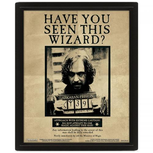 HARRY POTTER - 3D Lenticular Poster 26X20 - Potter / Sirius