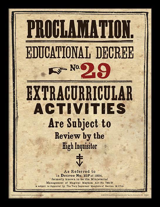 HARRY POTTER - Framed 30X40 Print - Educational Decree No. 29