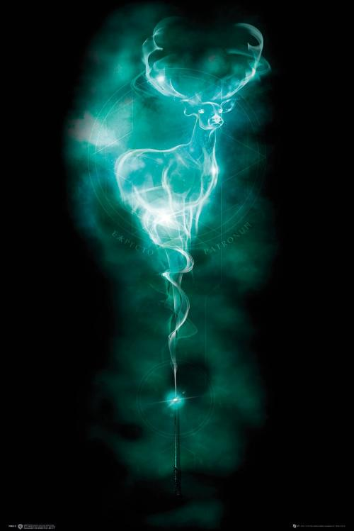 HARRY POTTER - Patronus - Poster '61x91.5cm'