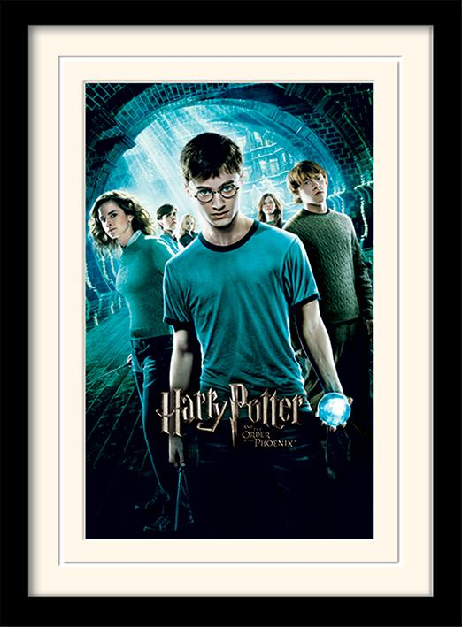 HARRY POTTER - Mounted & Framed 30X40 Print - Order of The Phoenix