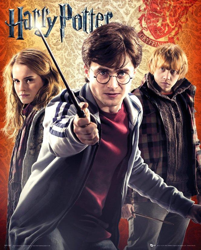 HARRY POTTER - Mini Poster 40X50 - Trio