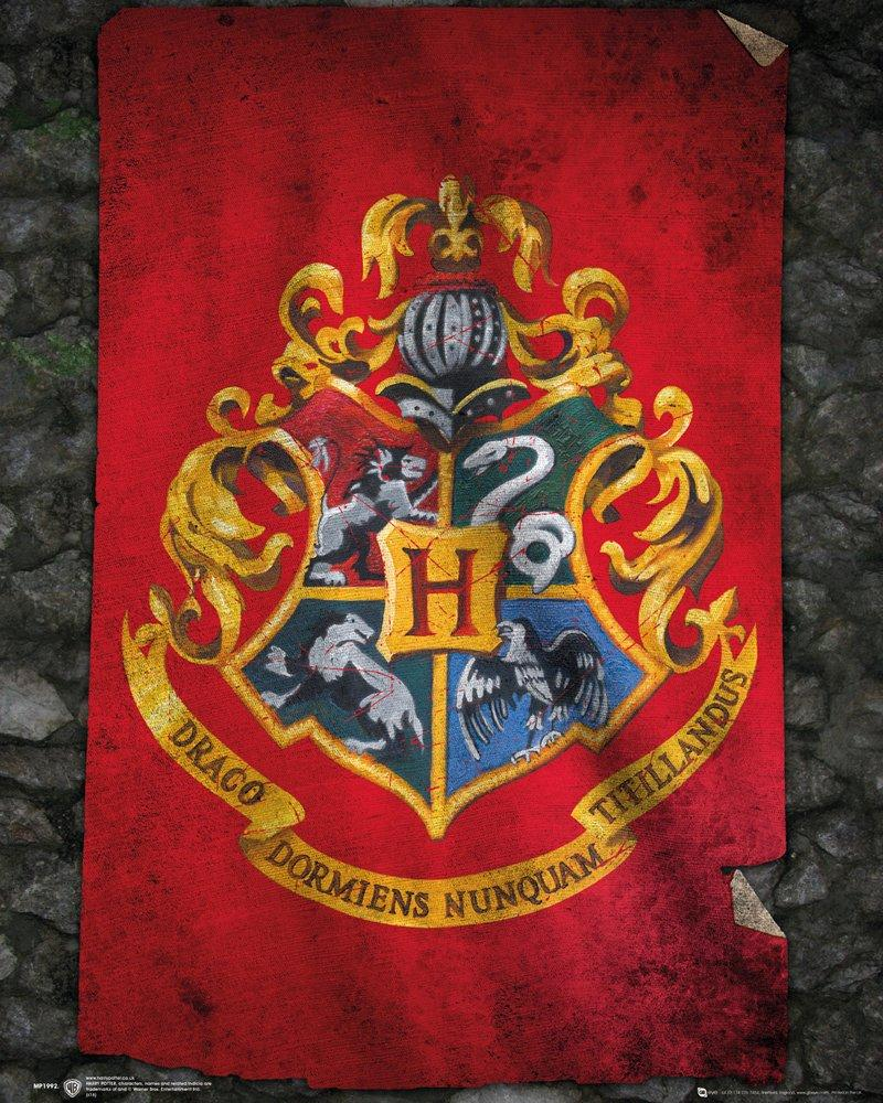 HARRY POTTER - Mini Poster 40X50 - Hogwarts Flag