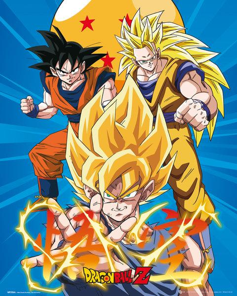 DRAGON BALL Z - Mini Poster 40X50 - 3 Gokus