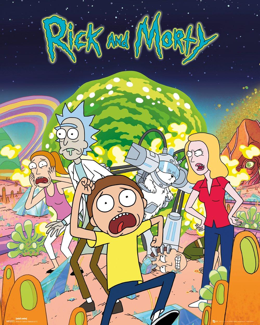 RICK & MORTY - Mini Poster 40X50 - Groupe