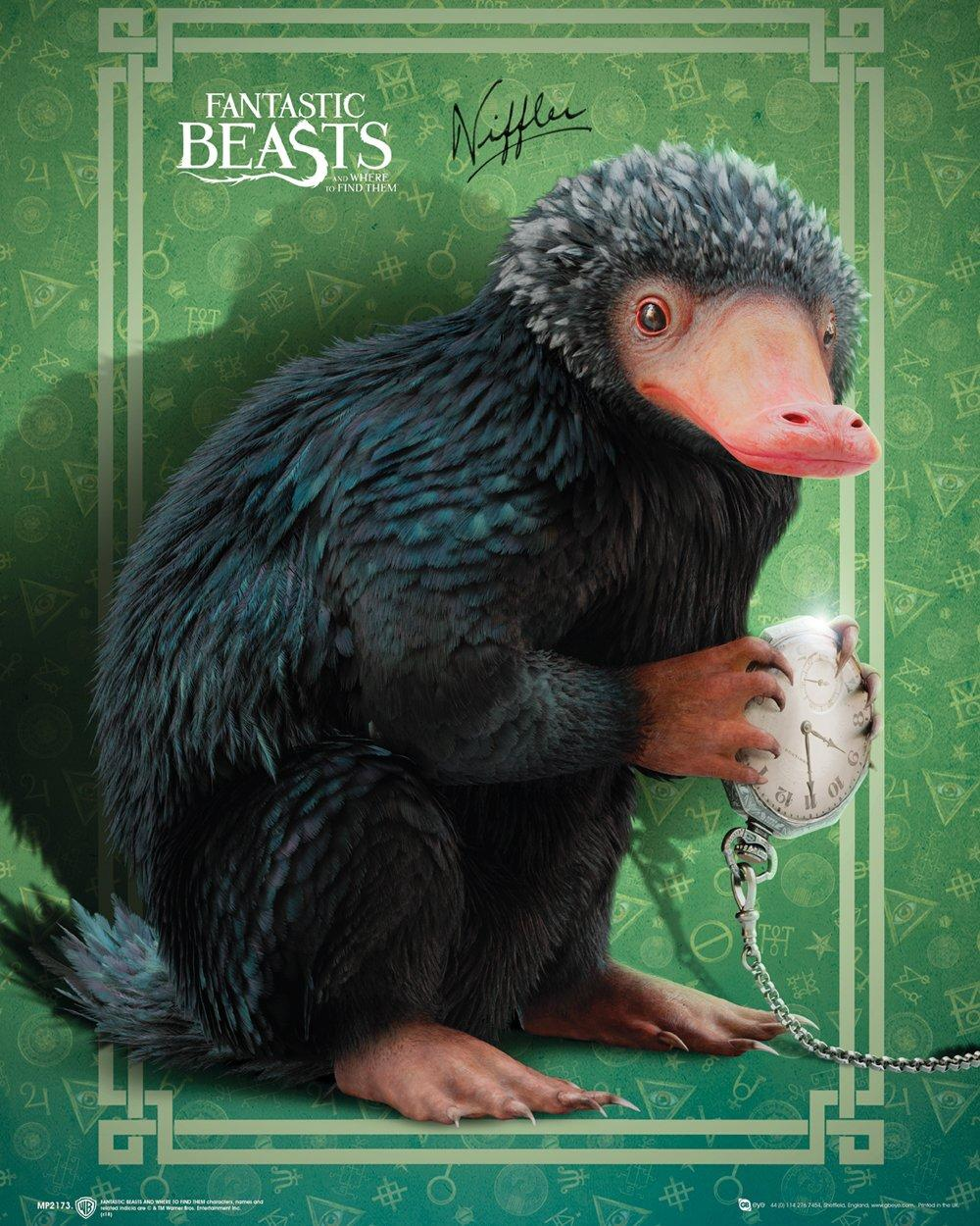 FANTASTIC BEASTS - Mini Poster 40X50 - Niffler
