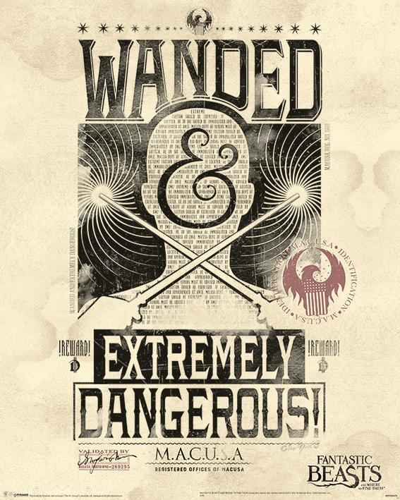 FANTASTIC BEASTS - Mini Poster 40X50 - Extremely Dangerous