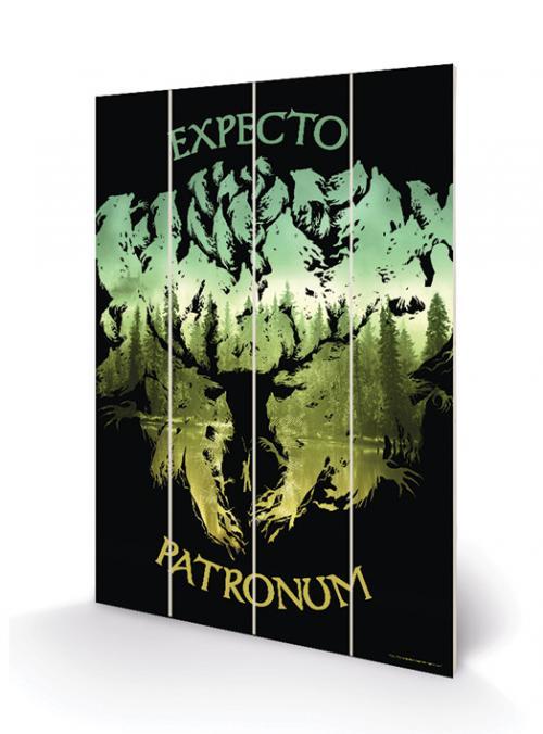 HARRY POTTER - Expecto Patronum - Impression sur bois 20x29.5