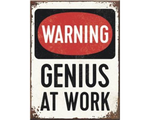 GENIUS AT WORK - Magnet '6x8cm'