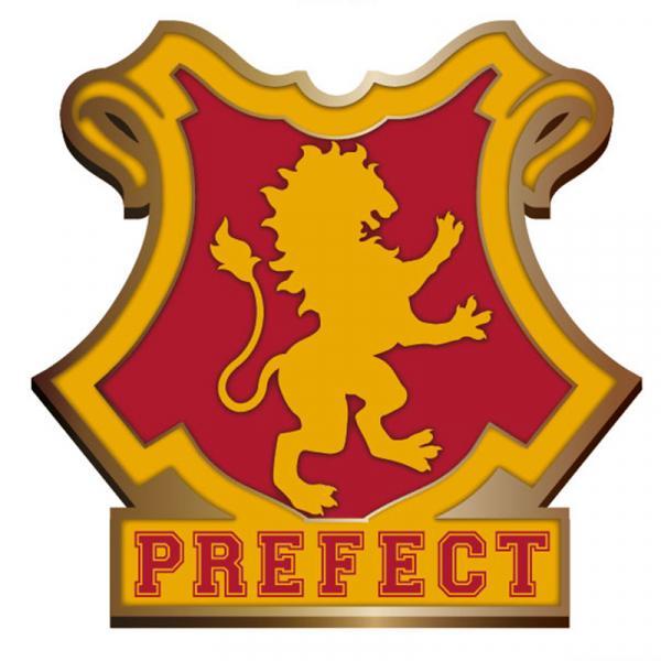 HARRY POTTER - Pin Badge Enamel - Gryffindor Perfect_1