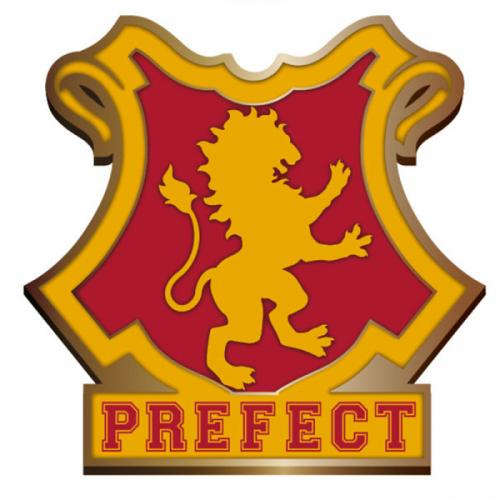HARRY POTTER - Pin Badge Enamel - Gryffindor Perfect