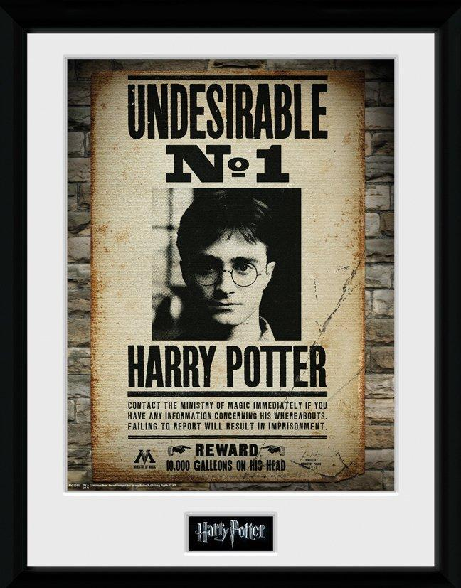HARRY POTTER - Collector Print 30X40 - Undesirable No1