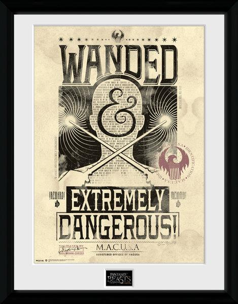 FANTASTIC BEASTS - Collector Print 30X40 - Wanted_2