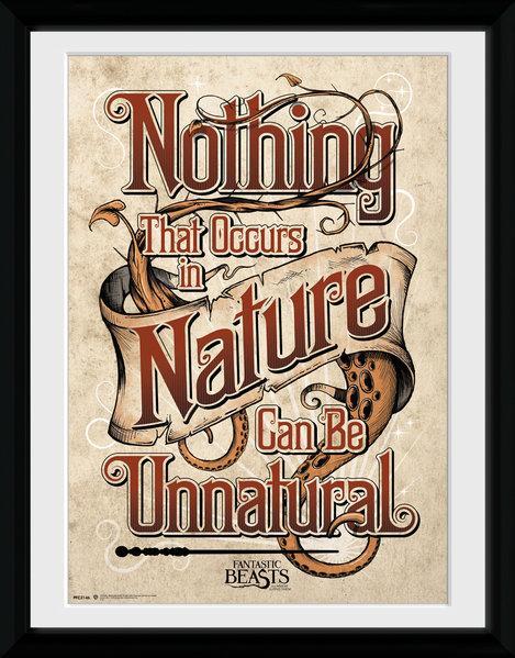 FANTASTIC BEASTS - Collector Print 30X40 - Nature_1
