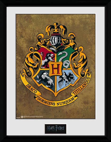 HARRY POTTER - Collector Print 30X40 - Hogwarts_1