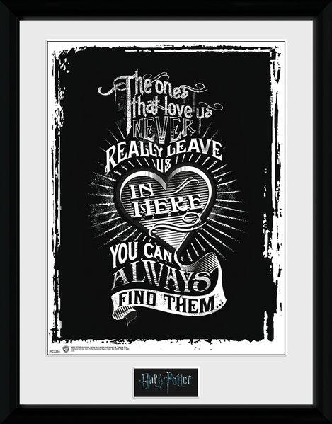 HARRY POTTER - Collector Print 30X40 - Love_2