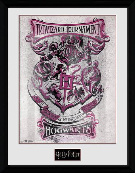 HARRY POTTER - Collector Print 30X40 - Triwizard Tournament