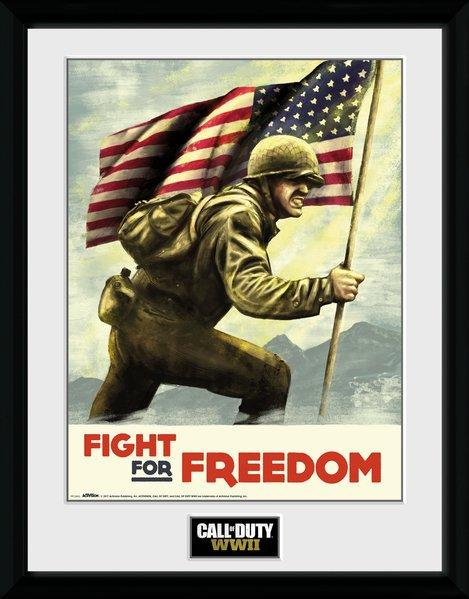 CALL OF DUTY WWII - Collector Print 30X40 - Fight for Freedom