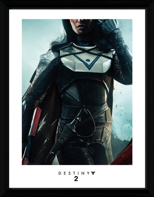 DESTINY 2 - Collector Print 30X40 - Hunter