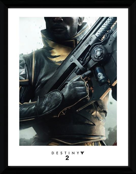 DESTINY 2 - Collector Print 30X40 - Warlock