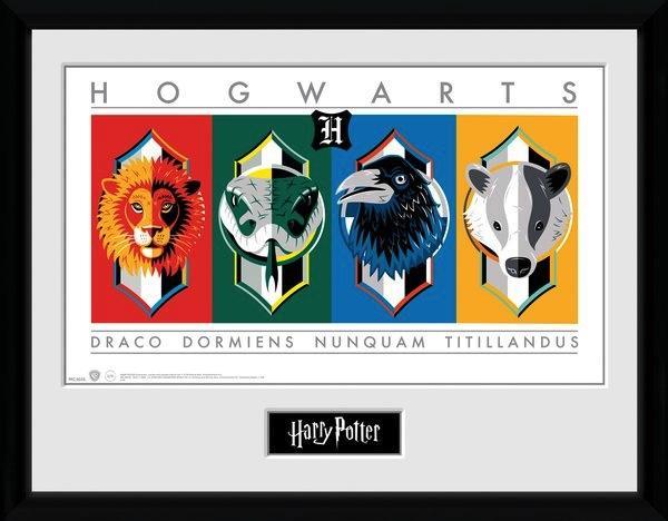 HARRY POTTER - Collector Print 30X40 - Sigils