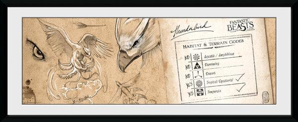FANTASTIC BEASTS - Collector Print 30X75 - Thunderbird