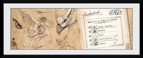 FANTASTIC BEASTS - Collector Print 30X75 - Thunderbird