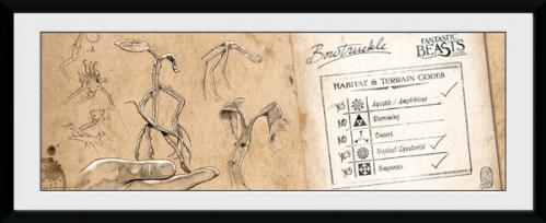 FANTASTIC BEASTS - Collector Print 30X75 - Bow Truckle