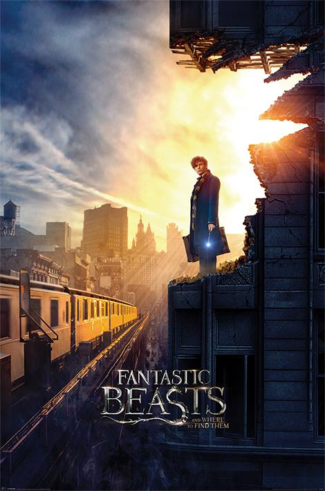 FANTASTIC BEAST Harry Potter - Poster 61X91 - Dusk_1