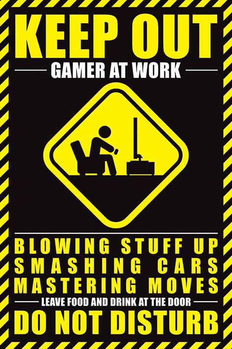 GAMERS - Poster 61X91 - Gamer at Work