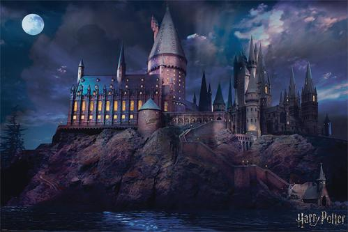 HARRY POTTER - Poster 61x91 - Hogwarts