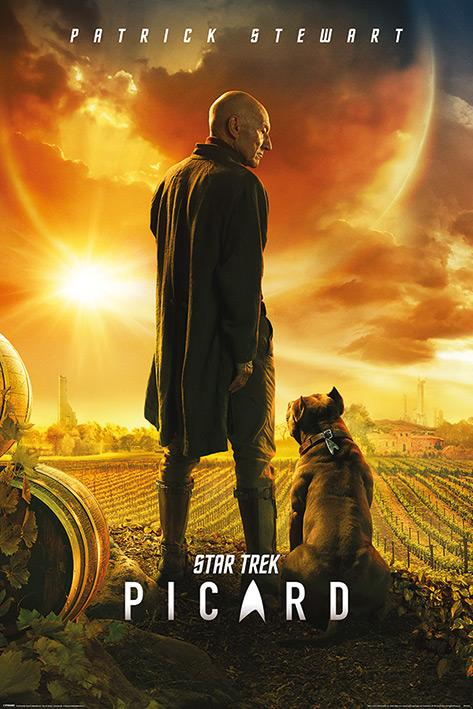 STAR TREK - Poster 61X91 - Picard - Number One