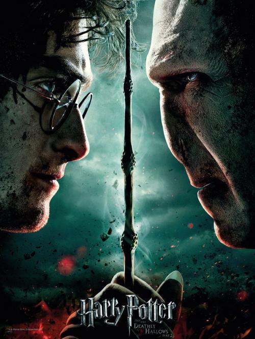 HARRY POTTER - Impression en Verre - Harry / Voldemort - 30X40 Cm