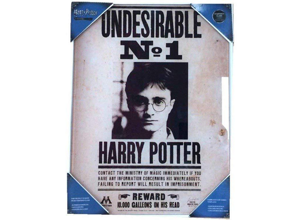 HARRY POTTER - Impression en Verre - Undesirable N°1 - 30X40 Cm
