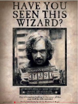 HARRY POTTER - Impression en Verre - Wizard Sirius - 30X40cm