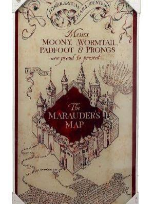 HARRY POTTER - Impression en Verre - Marauder's Map - 30X60 cm