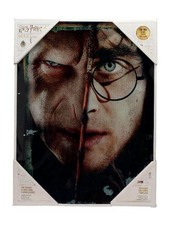 HARRY POTTER - Impression en Verre - Harry / Voldemort - 30X40cm